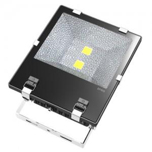 TQ-S105TC-B2x40W  LED High Power Flood Light 80W (USA Technology)