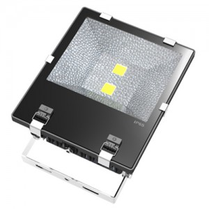 TQ-S105TC-B2x60W  LED High Power Flood Light 120W (USA Technology)