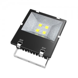 TQ-S105TC-B4x40W  LED High Power Flood Light 160W (USA Technology)