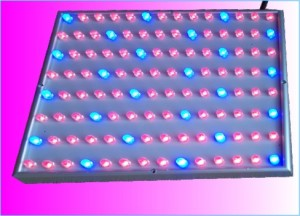 TQ-NL55W LED Plant Grow Lights 55W Panel Design