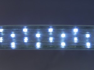 TQ-RL5W-led120   LED Rope Lights Flat Type 5 Wire Series