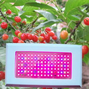 TQ-NL180x3W LED High Power Plant Grow Lights 180x3W Panel Design